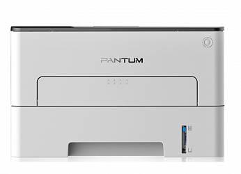 Pantum P3010D